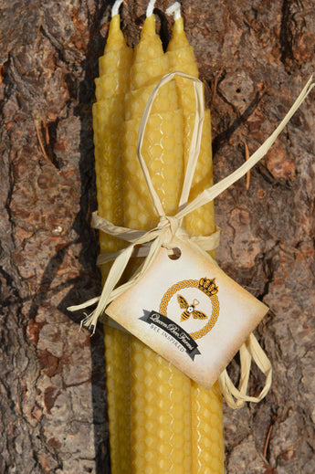 Bee Inspired Honeycomb Rolled Beeswax Candles (Set of 3)