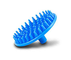 Shampoo Brush and Scalp Invigorator