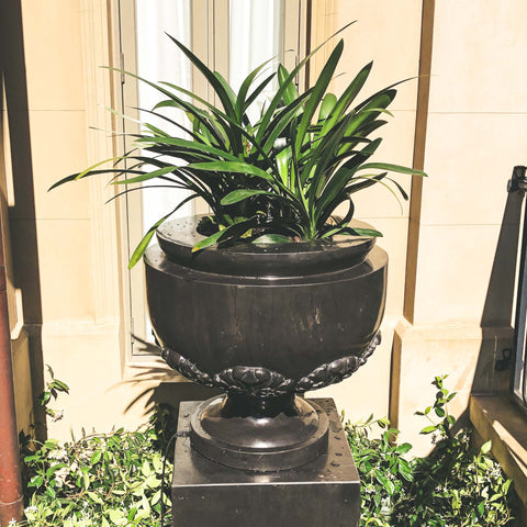 Fluted Acanthus Urn & Pedestal - Ian Lyell Design Pots for Living Life