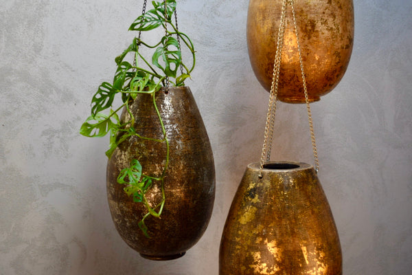 Boho Limited Edition Plant Hanger C - Ian Lyell Design Pots for Living Life