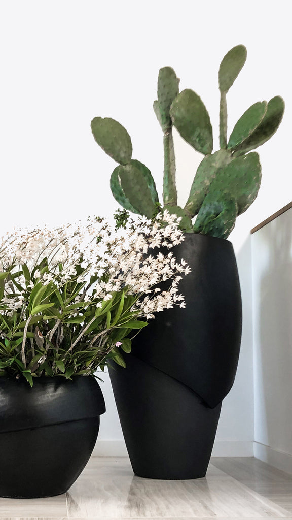 Millinery Indoor Planter 1 - Ian Lyell Design Pots for Living Life