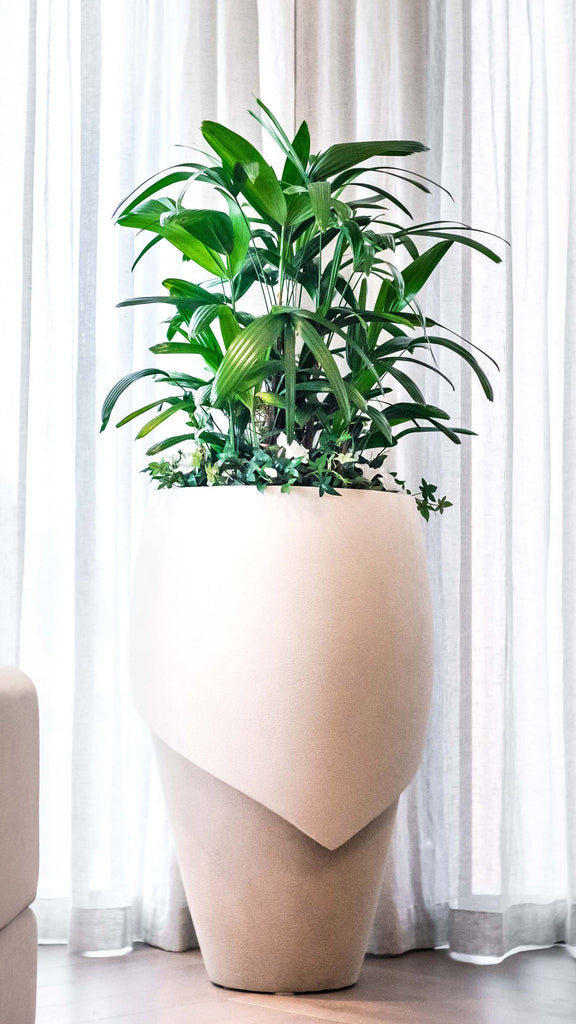 Millinery 7 Indoor Planter - Ian Lyell Design Pots for Living Life