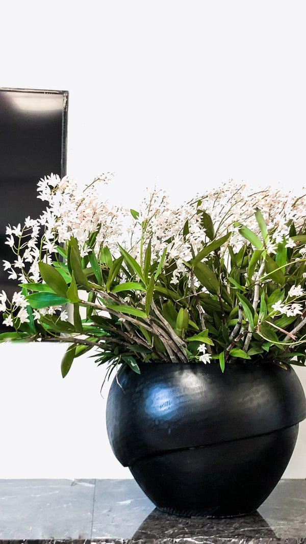 Millinery B 3 Indoor Planter - Ian Lyell Design
