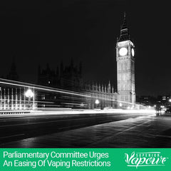 Parliamentary Committee Urges an Easing of Vaping Restrictions