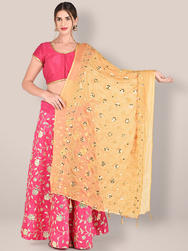 Embroidered Beige Chiffon Dupatta