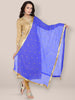 Blue Embroidered  Chiffon Dupatta