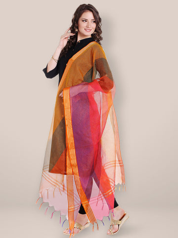 Dupatta Bazaar Women's Multicoloured Silk Dupatta .