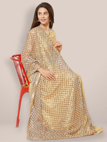 Grey Net Dupatta with Anitique gold sequence and Beads border