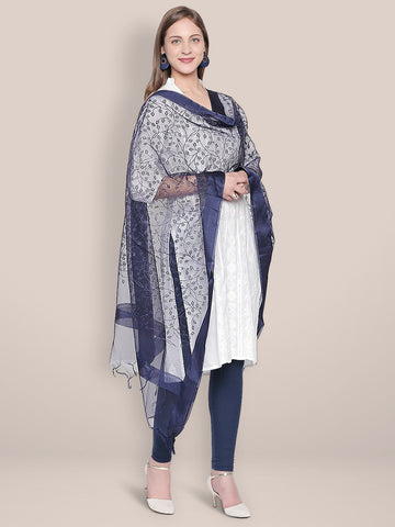 Embroidered Blue Organza Dupatta