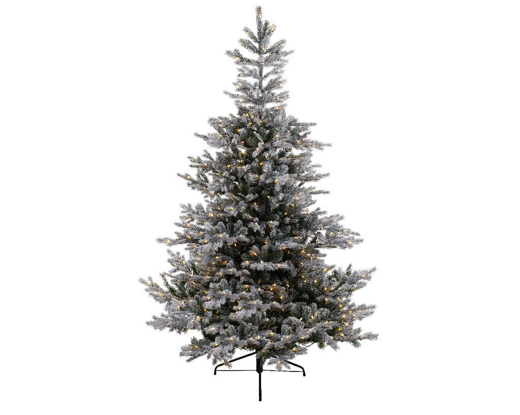 Everlands - 7ft 'Snowy Grandis Fir Pre-Lit' Artificial Christmas Tree