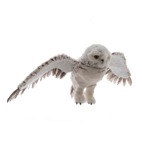 Grey Flying Hanging Owl