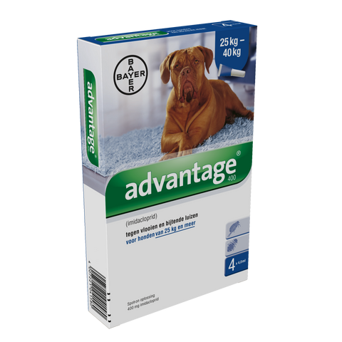 Advantage Hond 400