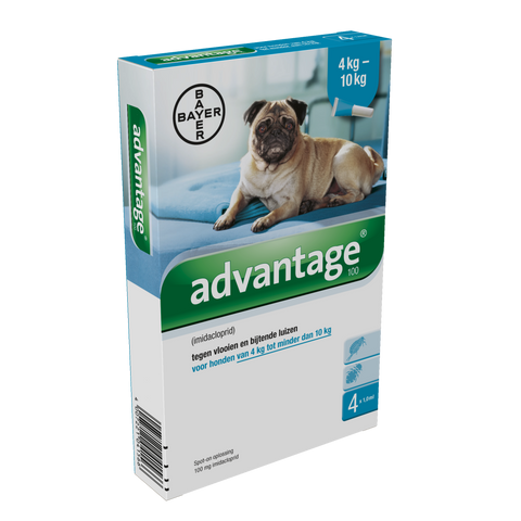 Advantage Hond 100