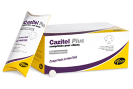 Cazitel Plus XL l 50 tabletten