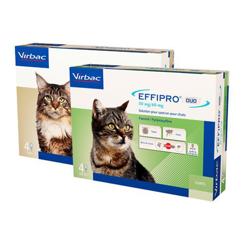 EFFIPRO DUO ® spot-on Kat 4 pipetten