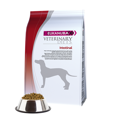 Veterinary Diets  Intestinal Dog