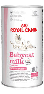 Royal Canin Babycat Milk | 300 gr