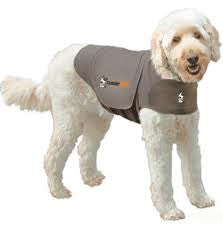 Thunder Shirt: No more stress