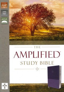 Amplified Large Print Study Bible - Purple LeatherSoft