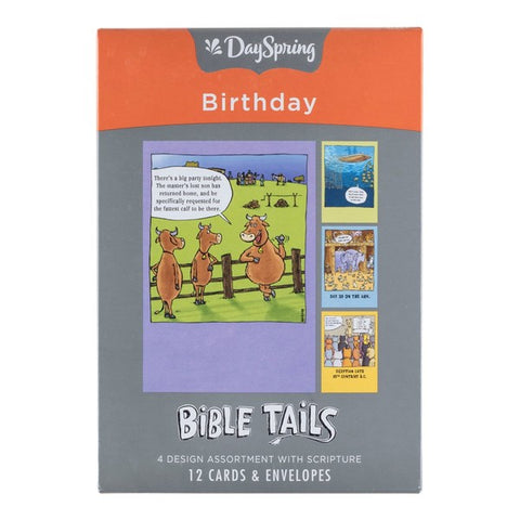 Boxed Cards - Birthday Bible Tails