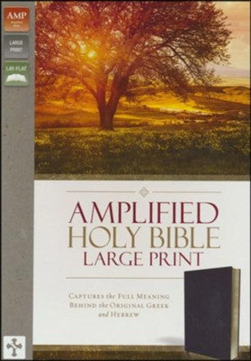 Amplified Large Print Bible - Burgundy Bonded Leather