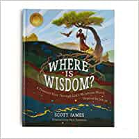 Where is Wisdom? (Hardcover)