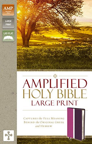 Amplified Large Print Bible - LeatherSoft Pink/Purple