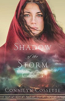 Shadow of the Storm Novel