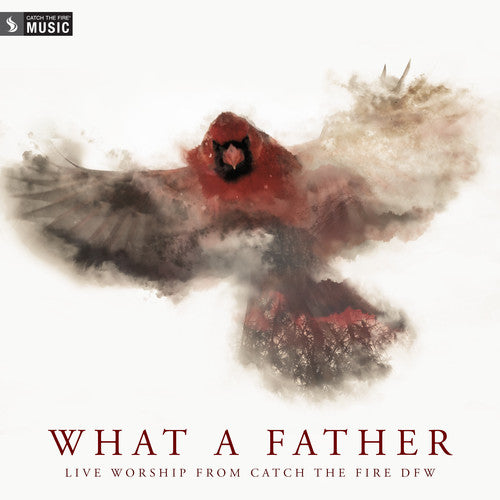 What a Father (Live) CD