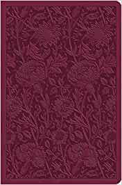 ESV Value Compact Bible - Raspberry Floral
