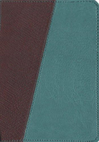 The Message Compact Bible - Teal/Brown