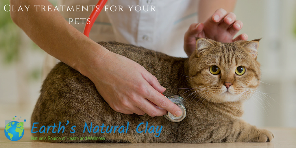 Clay Treatments For Your Pets