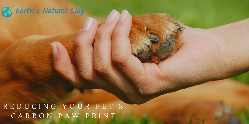 Reducing Your Pet's Carbon Paw Print