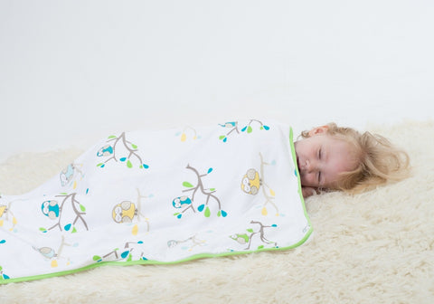 Bamboo Bubble Dream Blanket Ollie the Owl