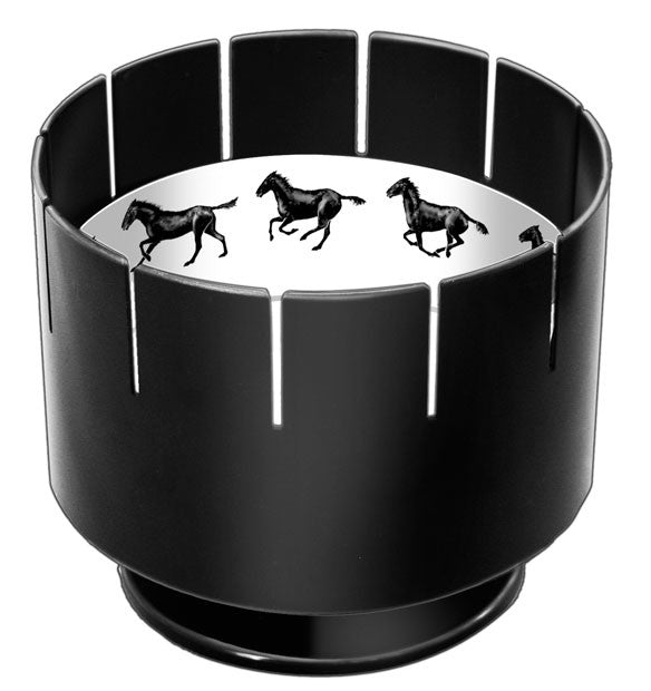 Who Invented the Zoetrope