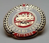 45 year society badge (new)