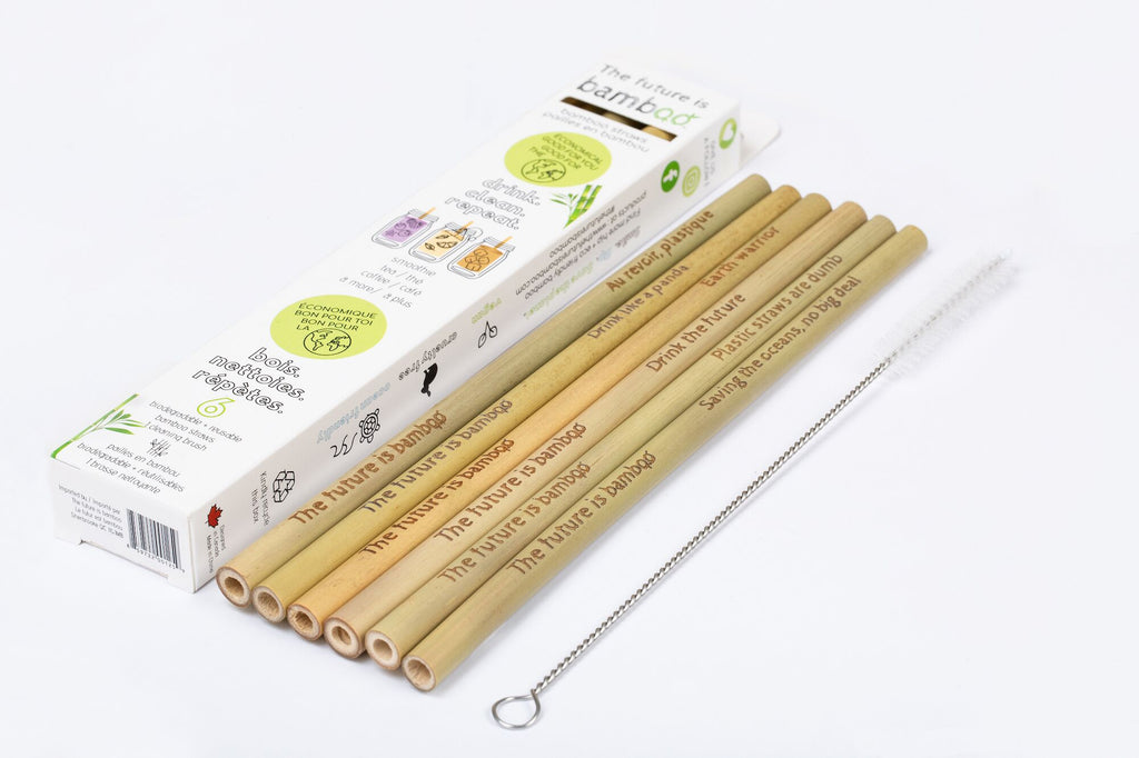 Bamboo Straws + Cleaning Brush