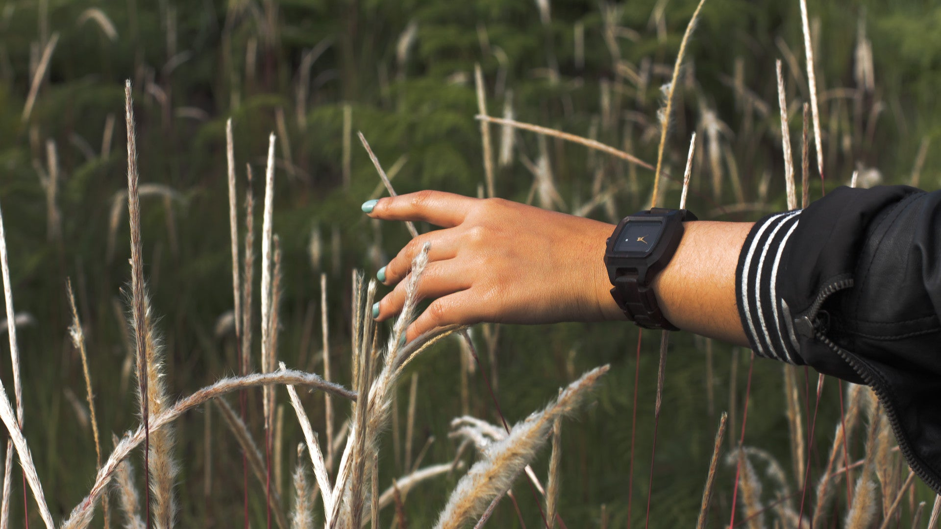 WUD Apparel wood watch natural sustainable