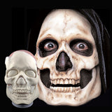 Cinema Secrets Foam Prosthetic - Skull | Camera Ready Cosmetics - 8