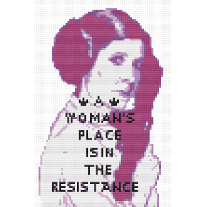 Feminist cross stitch chart - A Woman's Place