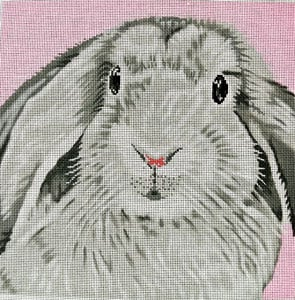 Floppy Bunny on Pink