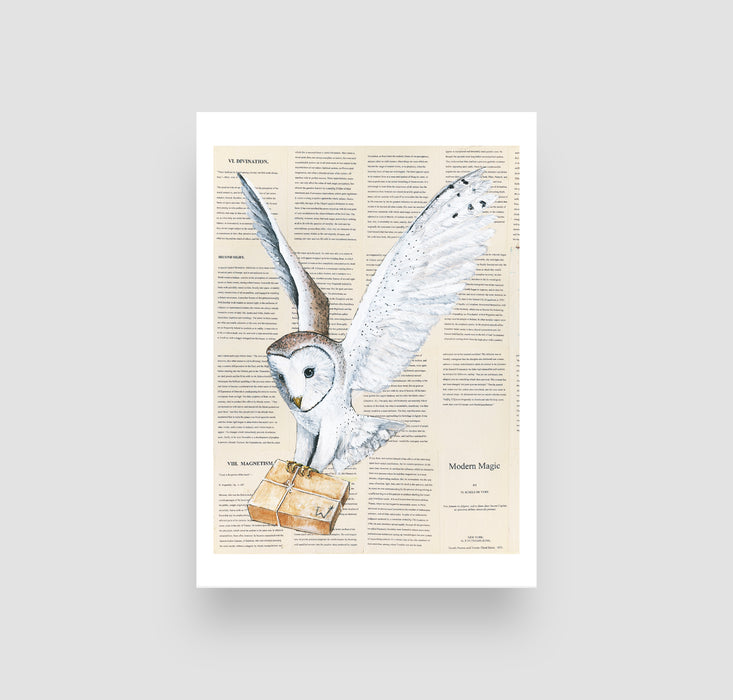 "5"" x 7"" Owl Post Parcel in color on Book Pages  from Harry Potter"