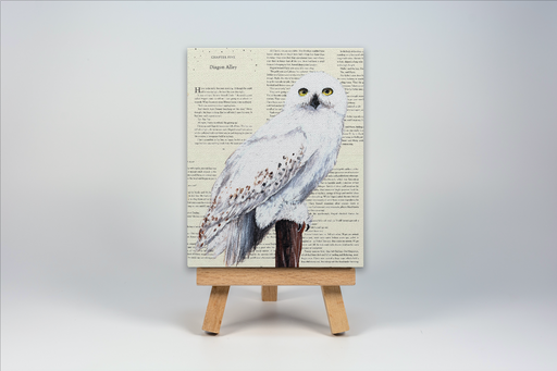 Mini Canvas Print of Hedwig from Harry Potter