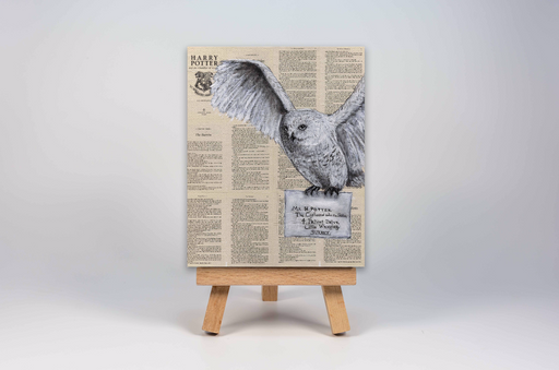 Mini Canvas Print of Hedwig with the Letter from Harry Potter