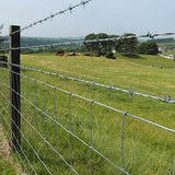 Anti Oxidation Decorative Barbed Wire , Barbed Wire Cattle Fence Easy Installation