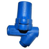1/2 in NPT SMC32Y Bimetallic Steam Trap, Carbon Steel, with Strainer, PMO 465 psig