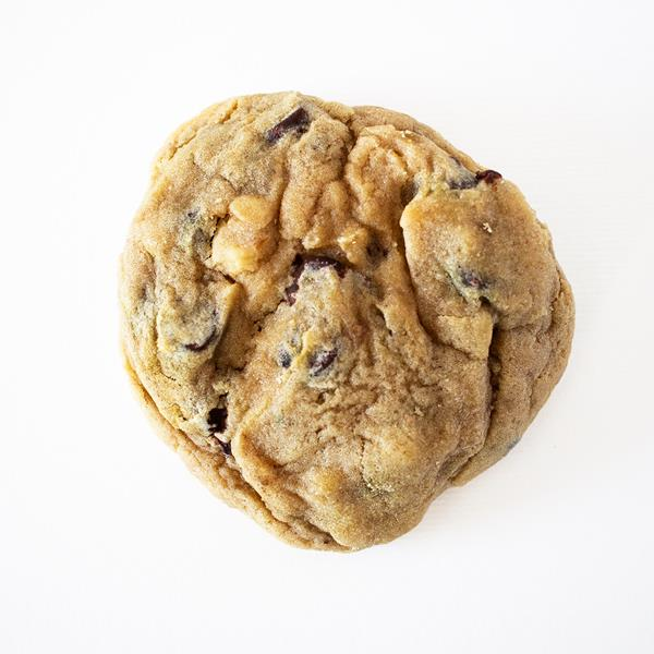 Homebaked Chocolate Chip Walnut Cookie