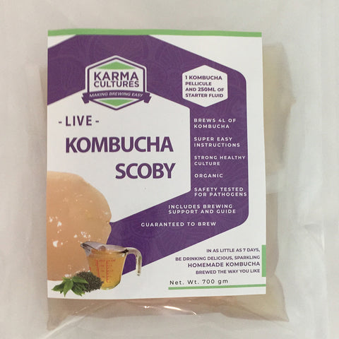 Kombucha SCOBY Culture, Organic Certified - Karma Cultures