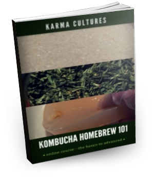 Course, Kombucha Homebrewing 101, Online - Karma Cultures
