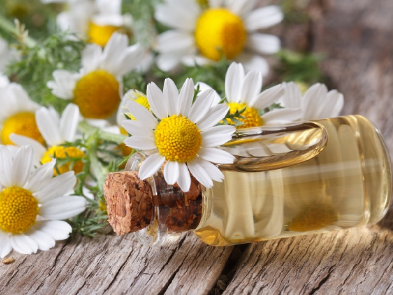 10 Natural Ways to Remove Calluses | Beauty Wellbeing chamomile